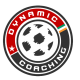 dynamic-coaching
